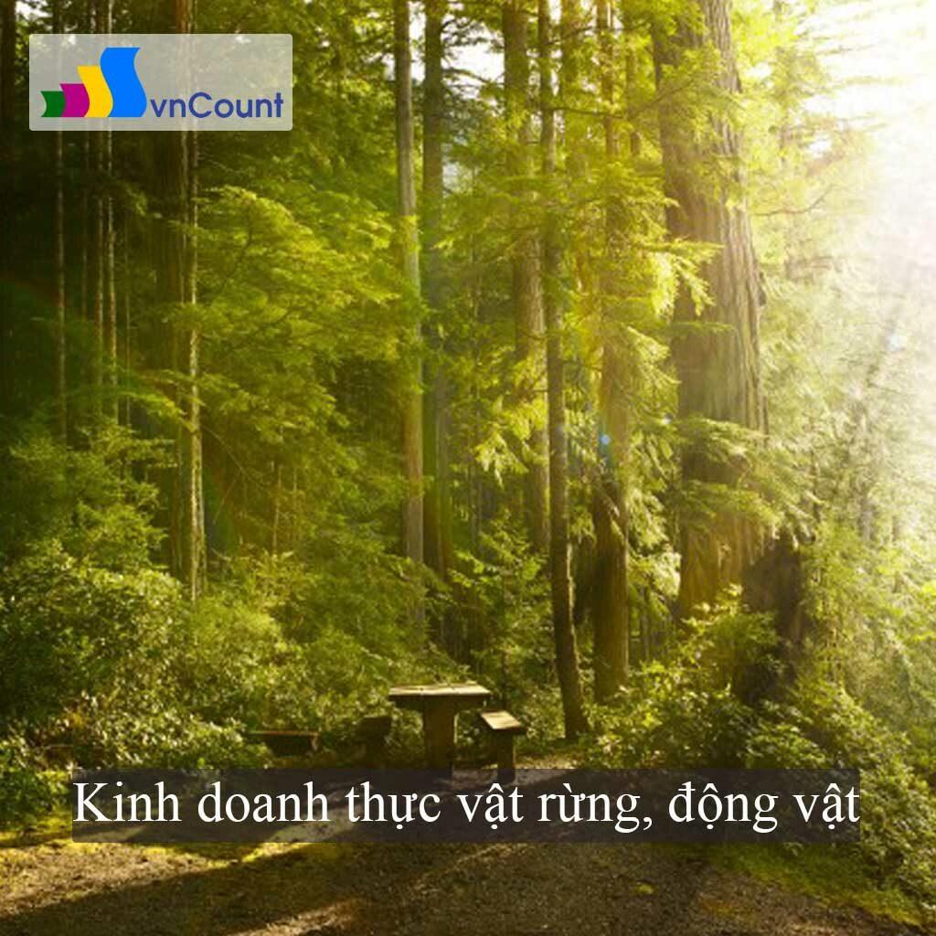 kinh doanh thực vật rừng