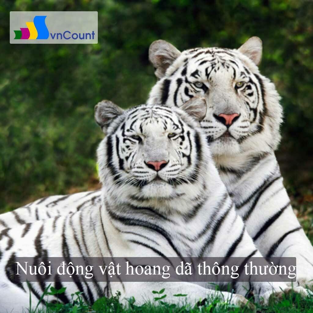 nuôi động vật hoang dã thông thường