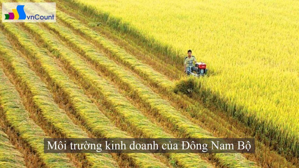 Môi trường kinh doanh của Đông Nam Bộ
